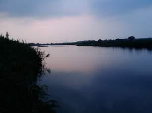 多摩川の夕日その2の図